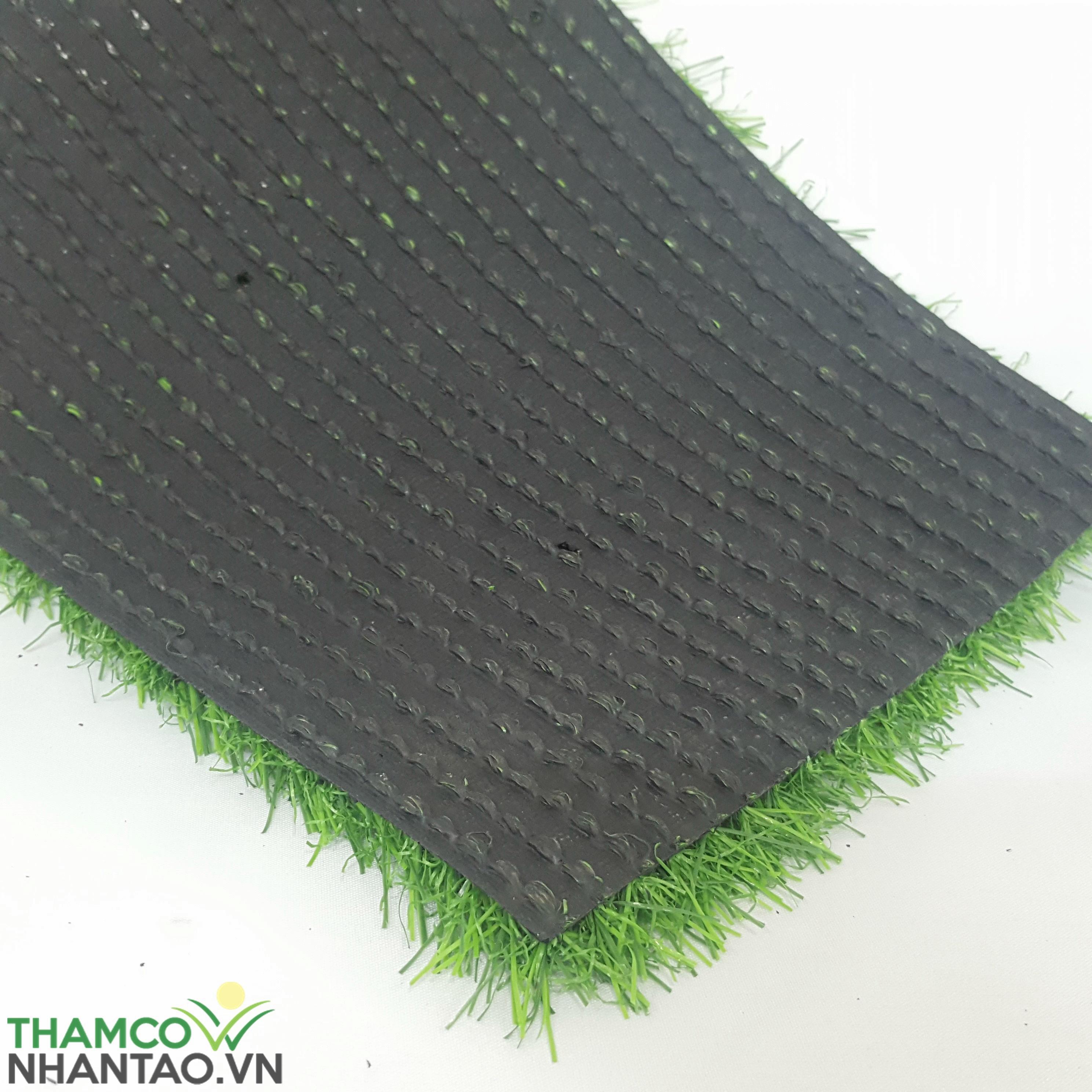 Chọn cỏ phụ thuộc vào đế thảm 1