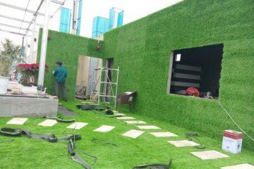 3 mẫu cỏ nhân tạo dán tường đẹp được nhiều người ưa chuộng nhất