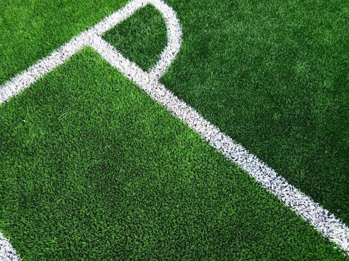 Chi phí đầu tư sân cỏ nhân tạo là bao nhiêu? 1
