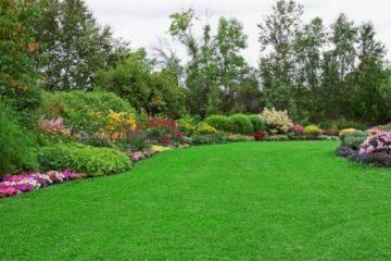 Ưu và nhược điểm của cỏ nhân tạo sân vườn