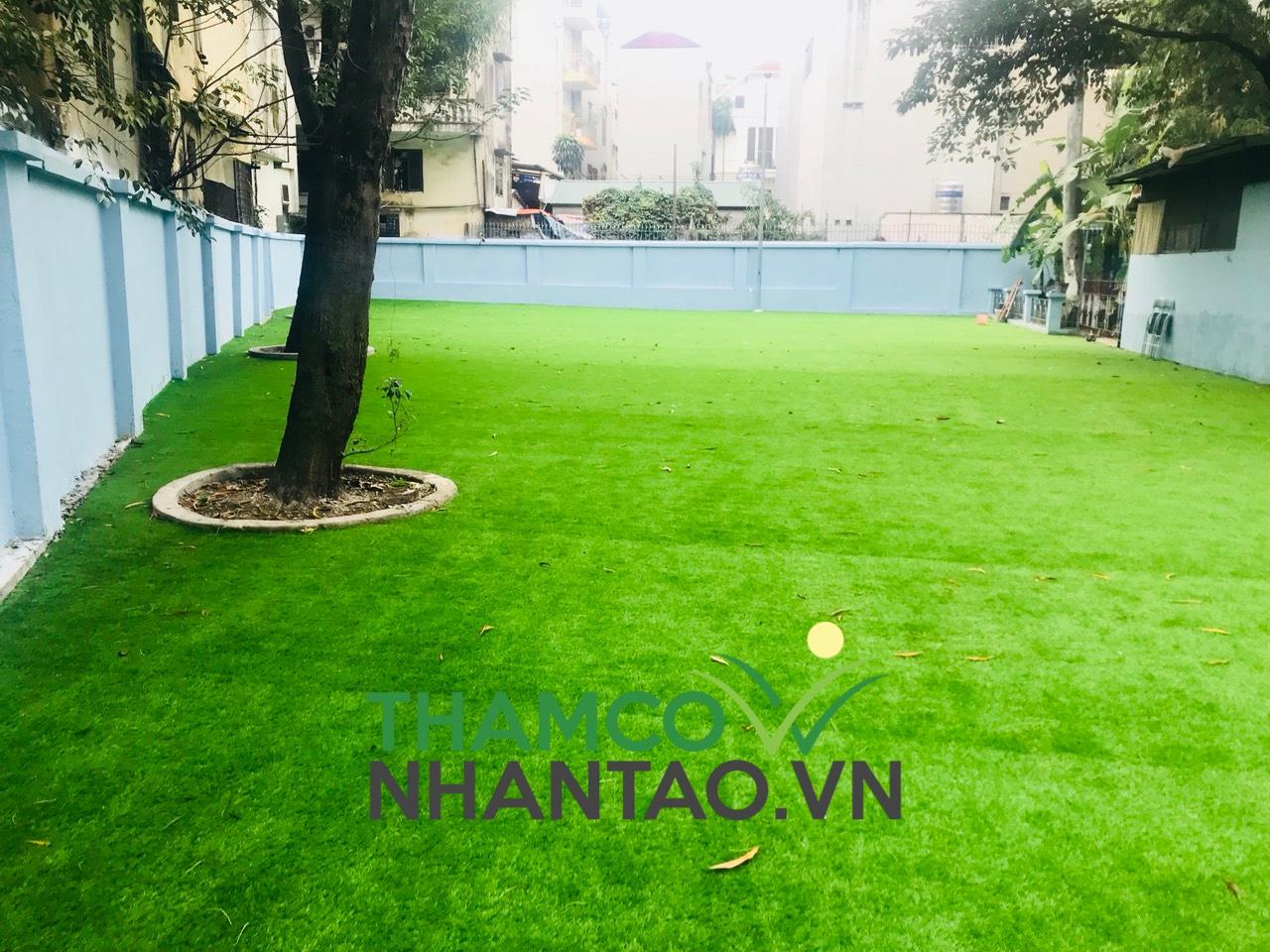 Một vài hình ảnh của dự án sân vườn trường tiểu học Thanh Lương quận Hai Bà Trưng, Hà Nội: 3