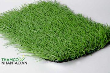 Mua thảm cỏ nhân tạo sân bóng ở đâu Hà Nội?