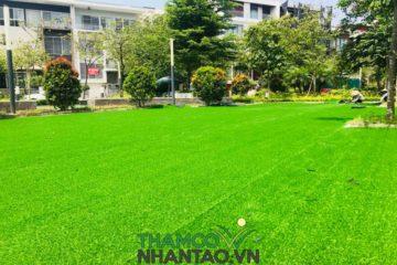 Có nên dùng cỏ sân vườn nhân tạo thay thế cỏ tự nhiên hay không?