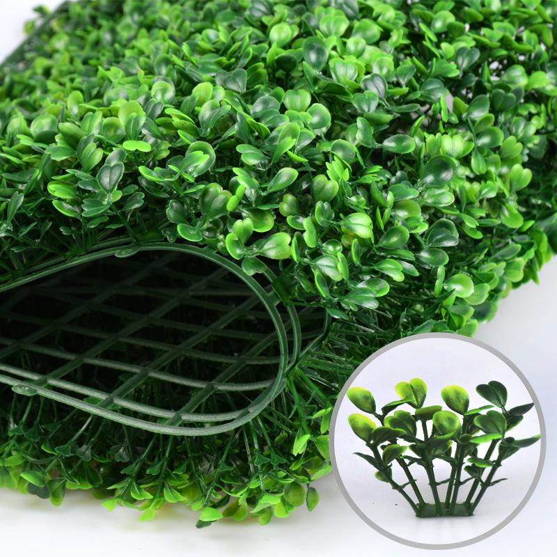 Cỏ dán tường mẫu cỏ cải xoong 1
